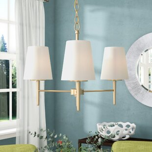 Shop for Ganador 3-Light Shaded Chandelier By Langley Street