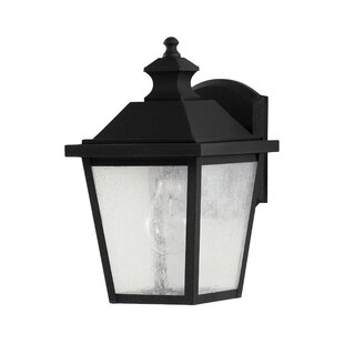 Looking for Outdoor Wall Lantern By Birch Lane™