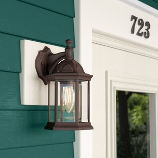 Elburn 1-Light Outdoor Wall Lantern