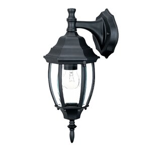 Astoria Grand Drumkeeran 1-Light Outdoor Wall Lantern