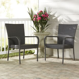 Hawes Patio Chair (Set of 2)