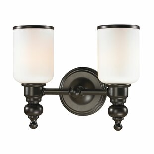 Darby Home Co Pinevalley 2-Light Vanity Light