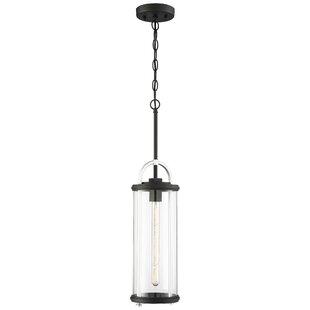 Wrought Studio Thurmont LED Outdoor Hanging Lantern