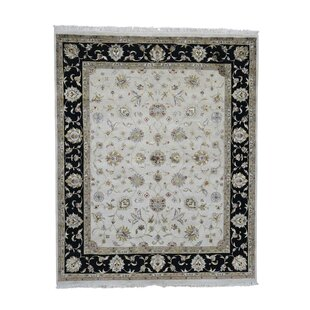 Price comparison One-of-a-Kind Thick Plush Rajasthan Hand-Knotted 8' x 10'1 Wool Ivory/Black Area Rug By 1800GETARUG