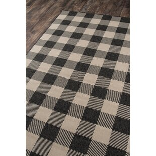 Cover Charcoal Indoor/Outdoor Area Rug