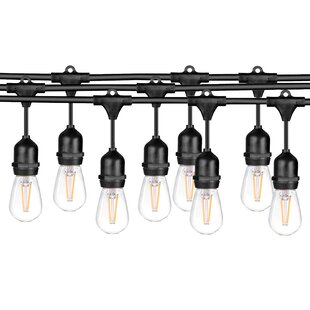 Williston Forge Outdoor Waterproof Edison Bulbs Ledpax String Lights