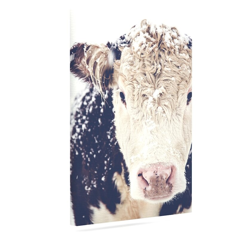 'Snowy Cow' Photographic Print on Canvas