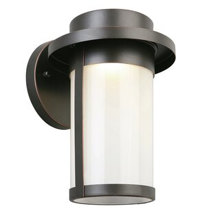 Casillas 1-Light Outdoor Wall Lantern