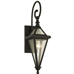 Darby Home Co Nautilus Outdoor Wall Lantern