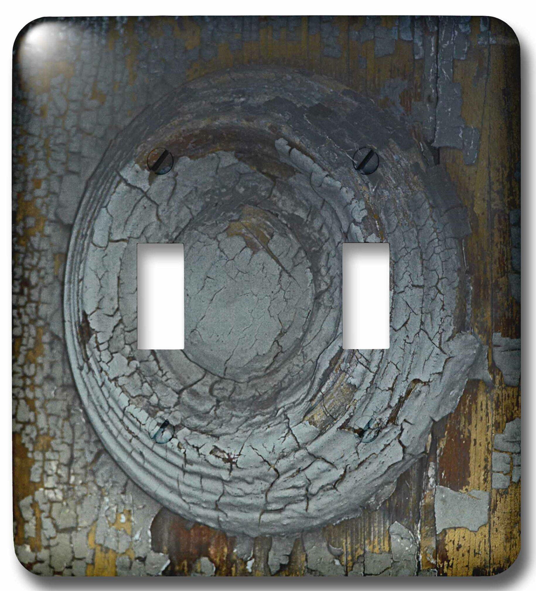 3drose Decorative Oval 2 Gang Toggle Light Switch Wall Plate Wayfair