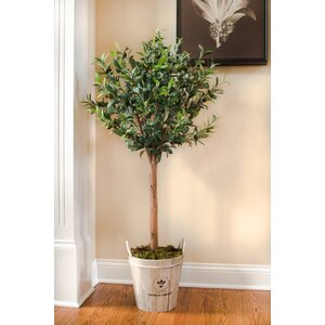 Faux Olive Trees Examples