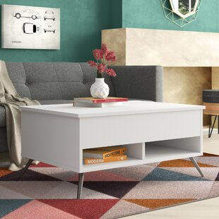 Best Reviews Raynham Coffee Table by Zipcode Design Reviews (2019) & Buyer's Guide