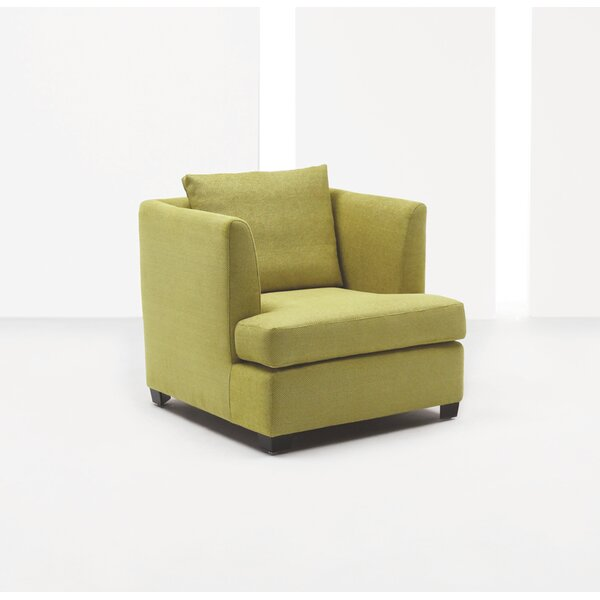 Pleasant Elise Arm Chair Wayfair Bralicious Painted Fabric Chair Ideas Braliciousco
