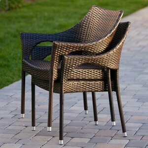 Danna Outdoor Wicker Arm Chair (Set of 2)