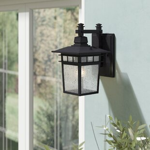Valeri 1-Light Glass Shade Outdoor Wall Lantern by Beachcrest Home