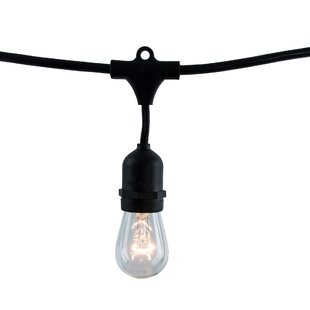 Imelda 48 ft. 15-Light Standard String Light