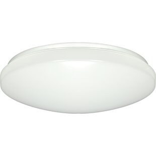 Ebern Designs Brian 1-Light Flush Mount