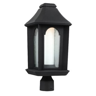 Affordable Bolivia 1-Light LED Lantern Head By Three Posts
