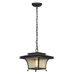 Fleur De Lis Living Colesville 1-Light Outdoor Pendant