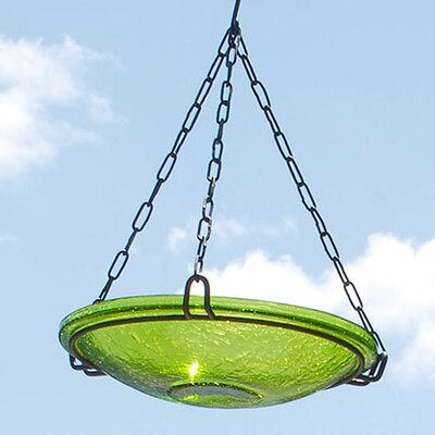 Crackle Wrought Iron Hanging Birdbath ACHLA Color: Fern Green