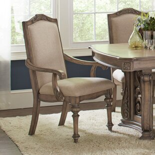 One Allium Way George Arm Chair (Set of 2)