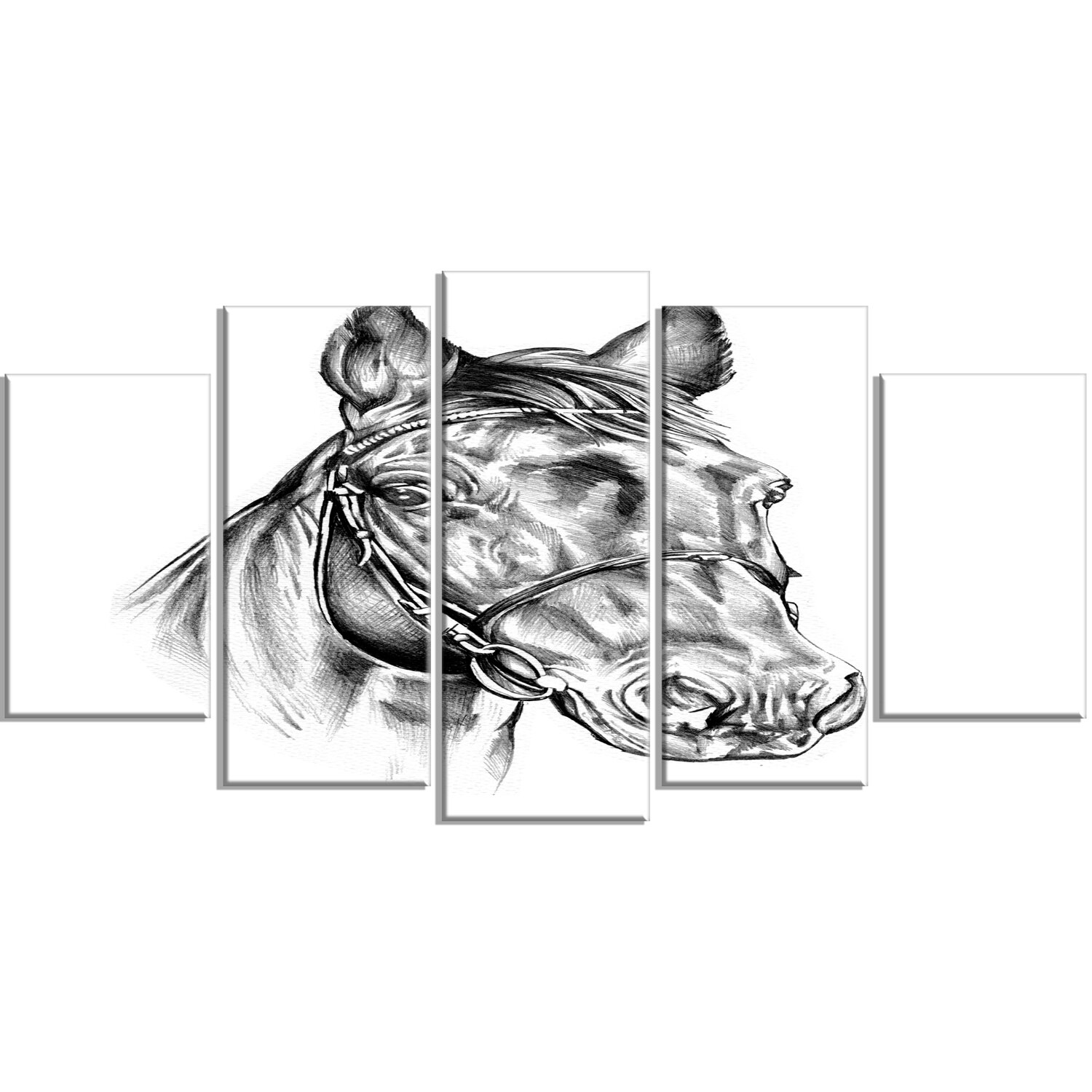 Designart freehand horse head pencil drawing 5 piece wall art on wrapped canvas set wayfair ca