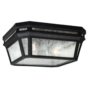 Darby Home Co Maxine 2-Light Outdoor Flush Mount