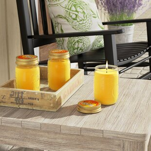 3 Piece Citronella Scented Jar Candle Set (Set of 3)