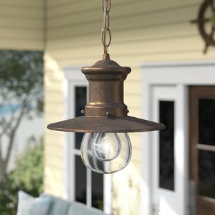Reviews Acklins 1-Light Outdoor Pendant By Beachcrest Home