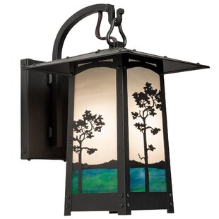 Great deal Dever 1-Light Outdoor Wall Lantern By World Menagerie
