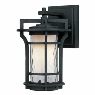 Searching for Espitia 1-Light Outdoor Wall Lantern By Millwood Pines