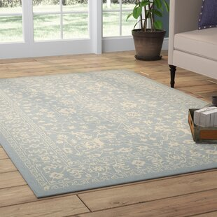 Phineas Light Blue Indoor/Outdoor Area Rug