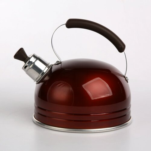 Marquart 1.25L Whistling Stovetop Kettle Symple Stuff Colour: Brown