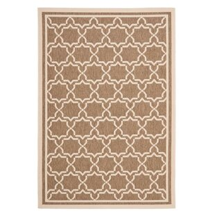 Short Brown/Tan Indoor/Outdoor Rug