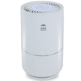 Ionizer Air Purifiers You Ll Love In 2021 Wayfair