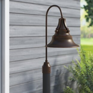 Dowling 1-Light Lantern Head by Beachcrest Home