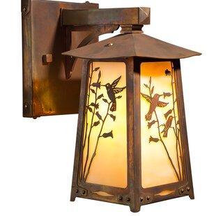 Top Reviews Devaughn 1-Light Outdoor Wall Lantern By August Grove