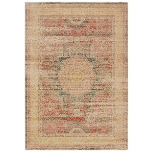 Kees Medallion Ivory/Red Area Rug By Bloomsbury Market