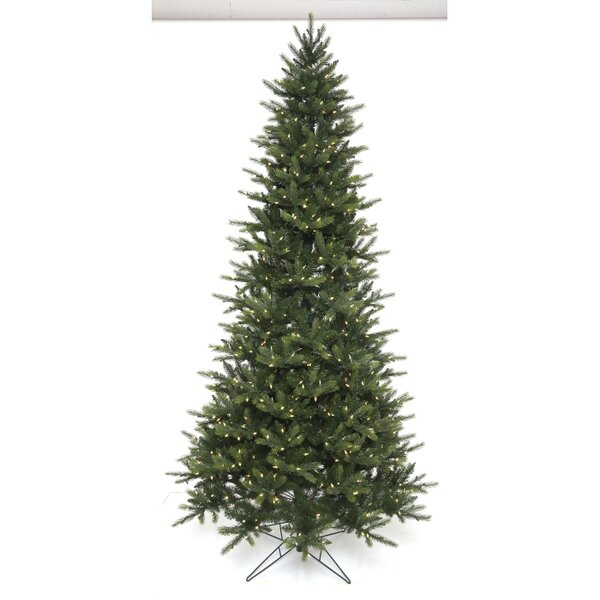 The Holiday Aisle Easy Plus Slim Greenridge 7 5 Green Spruce Artificial Christmas Tree With 700 Clear White Lights Wayfair