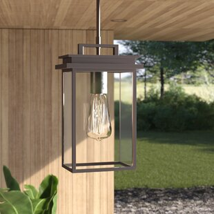 Eickhoff 1-Light Outdoor Hanging Lantern