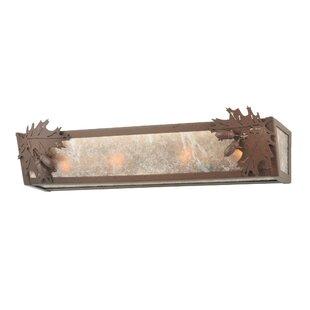 Meyda Tiffany Leaf and Acorn 4-Light Bath Bar