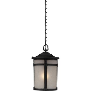 Russell 1-Light Outdoor Hanging Lantern