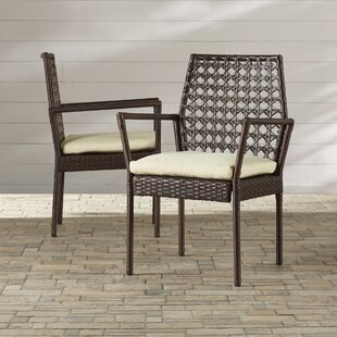 Byington Patio Dining Chair with Cushion (Set of 2) by Darby Home Co