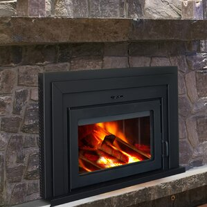 Fusion Wall Mount Wood Burning Fireplace Insert by Supreme Fireplaces Inc.