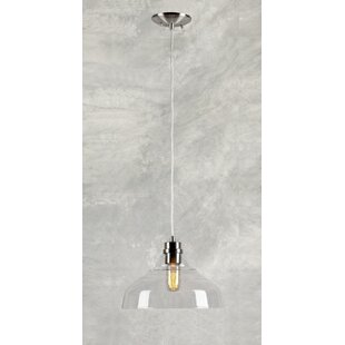 Laurel Foundry Modern Farmhouse Du Bois Cord-Hung 1-Light Dome Pendant