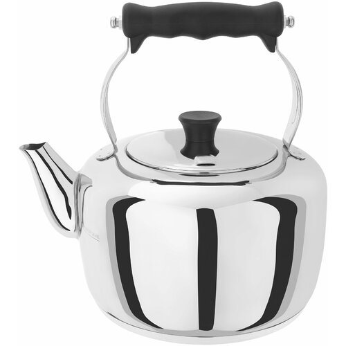 Traditional Stainless Steel Stovetop Kettle Stellar Capacity