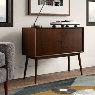 Brycen 2 Door Storage TV Stand by Langley Street