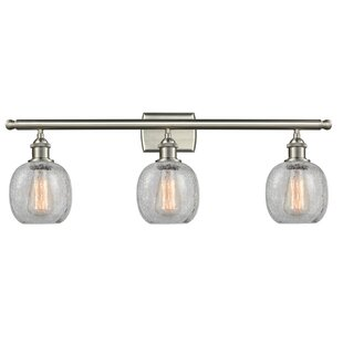 Ivy Bronx Raye 3-Light Vanity ..