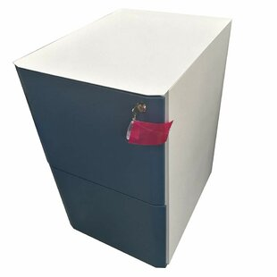Mccully 2 Drawer Filing Cabinet By Rebrilliant