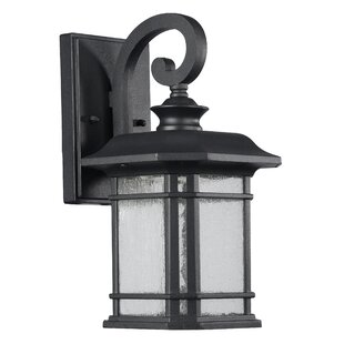 Coeymans 1-Light Outdoor Wall Lantern by Darby Home Co